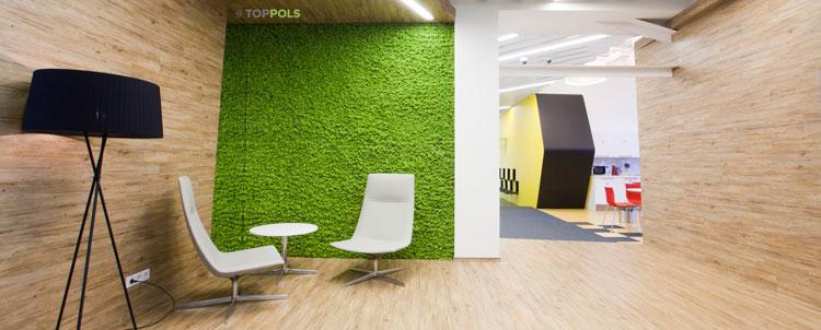 ковролин на стене в офисе